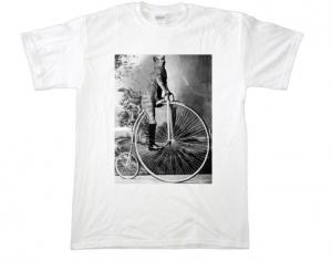 Fig. 2 Cat on Bike
